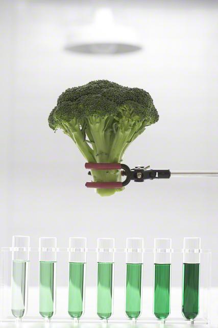 親子で食べたい!今話題の「ブロッコリースプラウト」が、栄養なさそうに見えて実は優秀の画像1