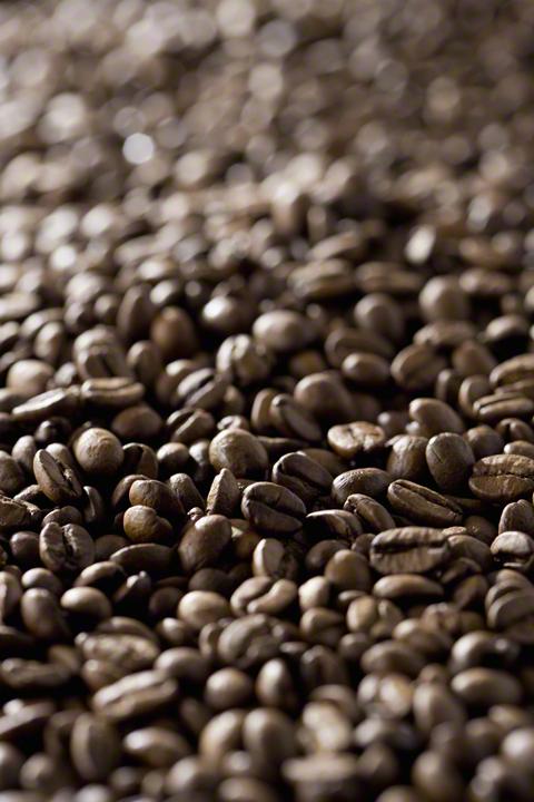コーヒーの出し殻は捨てないで!エコに再利用できる活用術のタイトル画像