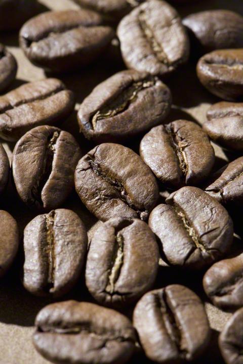 コーヒーの出し殻は捨てないで!エコに再利用できる活用術の画像2