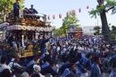 鶴谷八幡宮例大祭
