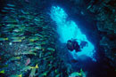 scuba divers swimming through sea cave