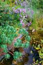 花のある庭と池で泳ぐ金魚
