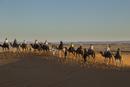 サハラ砂漠のラクダツアー