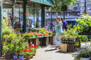 シテ島の花市場