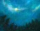 森の中から見上げる月夜