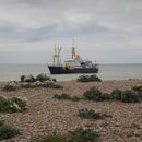 海岸から眺める浅瀬の船
