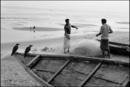 網を整理する漁師とカラス