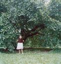 大きな木の下で本を広げる女の子