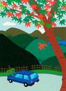 紅葉する木と青い車