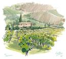 トスカーナのブドウ畑