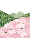 山間に咲く桜の木々