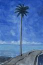 サモアのヤシの木