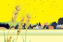 麦実る田園