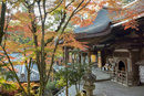 紅葉と石山寺本堂