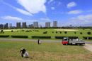 六郷土手の多摩川緑地の清掃
