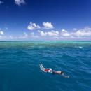 サンゴ礁の海とシュノーケリング