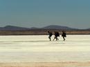 ボリビア 天空の塩湖 ウユ二の眺望