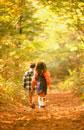 紅葉の木々と落葉の道を歩く子供2人後姿