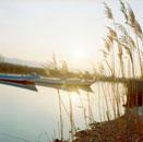 ススキと川のボート