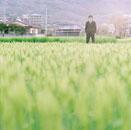 田んぼとスーツの男性