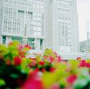 東京都庁と赤い花の後ろに立つ男性