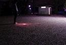 公園に散った桜と懐中電灯を持って立つ青年