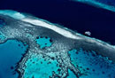 Great Barrier Reef,High Angle View