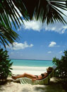 Woman lying on a sunlounger under palm trees