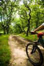 Female cyclist riding through woods