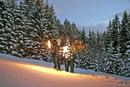 Austria, Salzburger Land, Altenmarkt, Young couple carrying fir tree at dusk