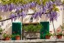 Window and Flowerpots, Spoleto, Umbria,Italy