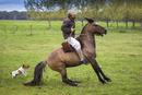 Man Horseback Riding at Candelaria del Monte, San Miguel de Monte, Argentina