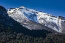 Close-up of mountain side, the Andes Mountains, Nahuel Huapi National Park (Parque Nacional Nahuel Huapi?), Argentina