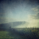 Jogger running in misty landscape at sunrise