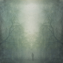 Person walking through misty forest, composite