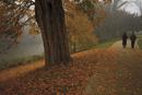 Couple walking through the Jephson Gardens in autumn, Leamington Spa, Warwickshire, Midlands, England, United Kingdom, Europe
