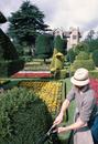 Topiary, Levens Hall, Cumbria, England, United Kingdom, Europe
