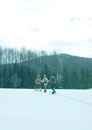 雪原をゆく3人の若者
