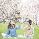 桜の前で乾杯をする2人の女性