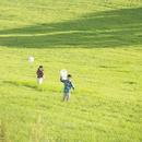 草原を走る兄妹