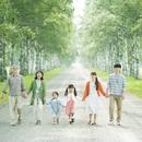 白樺並木を歩く3世代家族