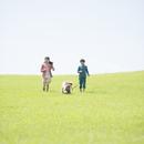 草原で犬の散歩をする姉弟