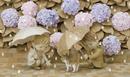 紫陽花の下の三毛猫と傘を差している二人の子供