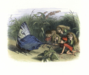 Elves and fairies teasing a butterfly