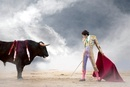 Bullfighter holding red cape with bull, Madrid