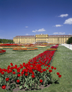 Palace and gardens, Schonbrunn, UNESCO World Heritage Site, Vienna, Austria, Europe