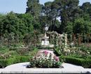 Rose Garden, Parque del Retiro, Madrid, Spain, Europe