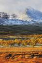 山裾の風景