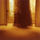 Partially translucent long satin skirts framed by plain curtains in window, partially obscured black cat on left, trees in backg