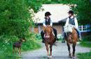 乗馬する人